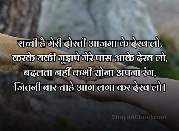 Sachi Dosti Shayari in Hindi with photo
