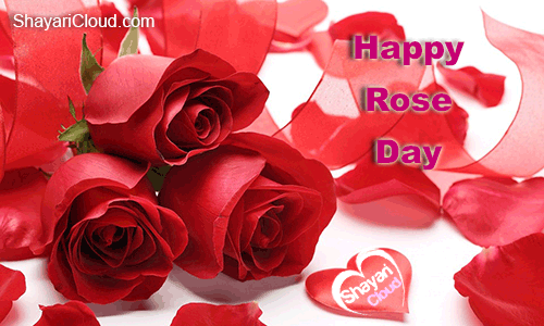 Rose Day SMS 2018