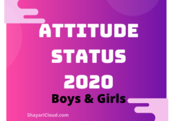 Attitude Status for Boys in Hindi 2020